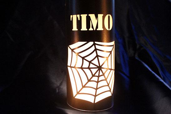 Lampion spinnenweb